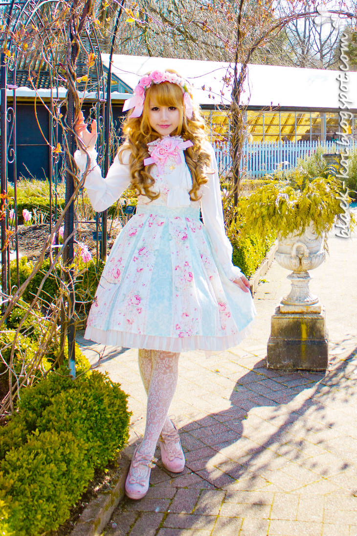 Dream of Spring by blackkoi