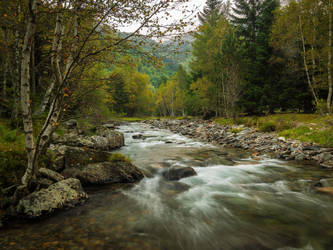 A river in the forest II... by jaco353