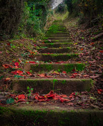 The stairs... by jaco353