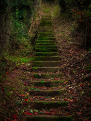 The stairs II... by jaco353
