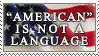 American by alaska-is-a-husky