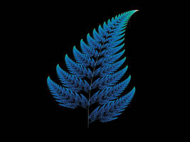 Blue Fern by cf33092