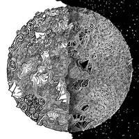 Moon by Felicis