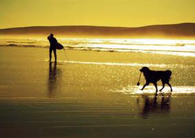 dog days.. by RestlessSands