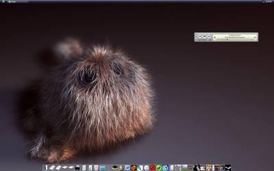 I love Dell Monitors by cold-dweller