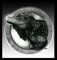 Rock Iguana by -malak-