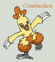 Combusken by Roky320