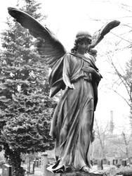 Angel by Roky320