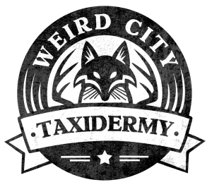 WeirdCityTaxidermy's Profile Picture