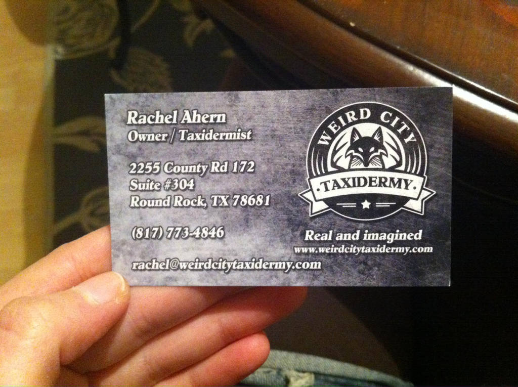 WCTNewCards by WeirdCityTaxidermy