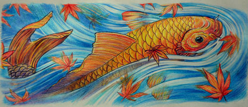 koi fish by MaayanCohen