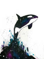 Orca by justcallmemike