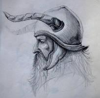 Viking by MiQ-Mifune