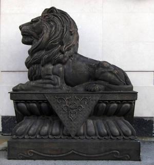 lion by svetamk