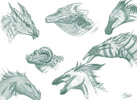 Dragon Head Sketches by Caerulai