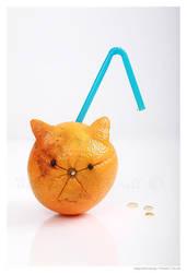 Disgruntle Orange by DuvallGear