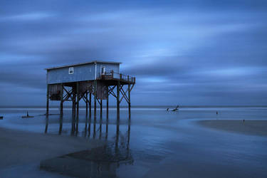 Flying Blue by ChadRouthier