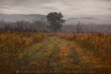 Fall Velvet by ChadRouthier