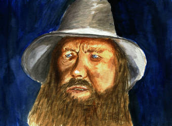 Gandalf the Younger by borsic