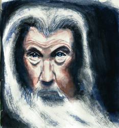 Gandalf the Older by borsic