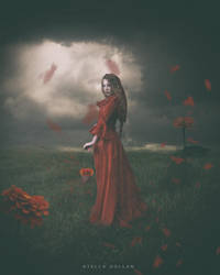 The woman in red by StellaKar