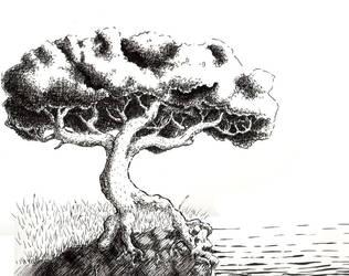 Tree on a Cliff by PleasantDoom