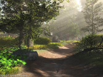 Forest Track by Lighti85