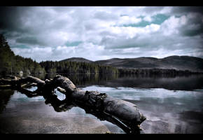 Loch Garten by Purplejackdaw