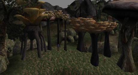 Othreleth Trees by Tamriel-Rebuilt