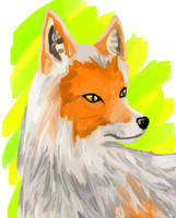 Fox_Paint by SlynineTails