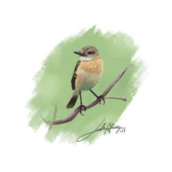 Bird by leoDrafts