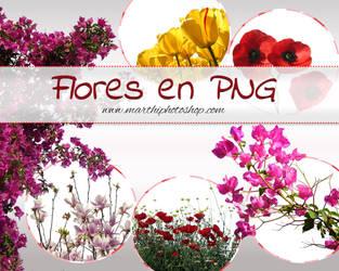 Presentacin Flores Png by DIABLOTINA