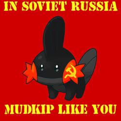 Soviet Mudkip by xAikaNoKurayami