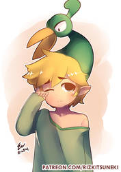 Toon Link by RizzyDA