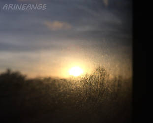 Hope by Arineange