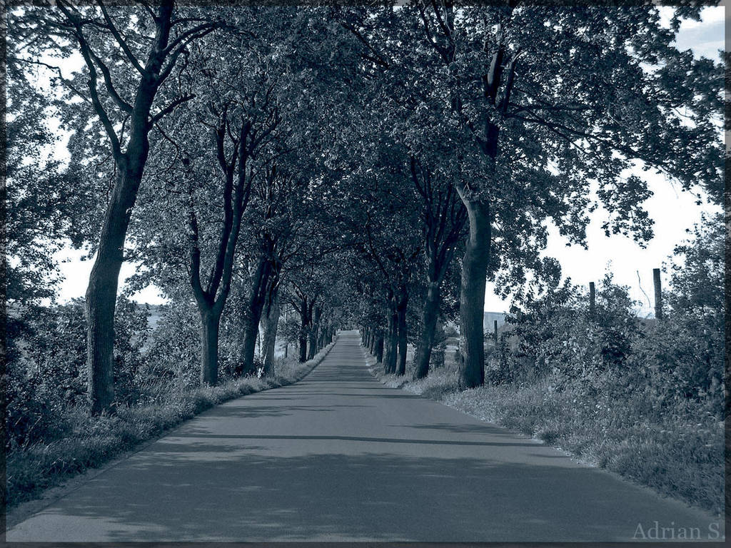 Road to nowhere by oktis