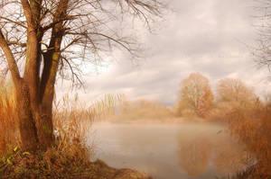 fairy tale on earth by Shadows-in-Twilight