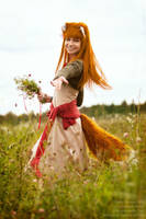 Horo in Field by andrewhitc