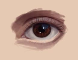 Realistic eye attempt by madnati-art