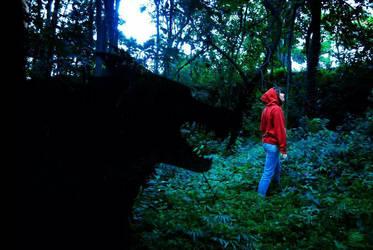 Red Riding Hood by madnati-art