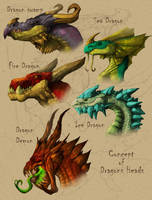 Concept Heads Dragons by DOUGLASDRACO