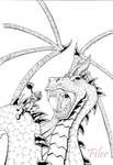 Dragon's Inkline by Flyler