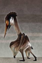 Hatzegopteryx (Simple Background) by Mantiscat