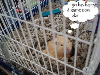 Sleepy Hamster by ongaku88