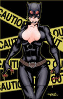 Catwoman Color by salo-art