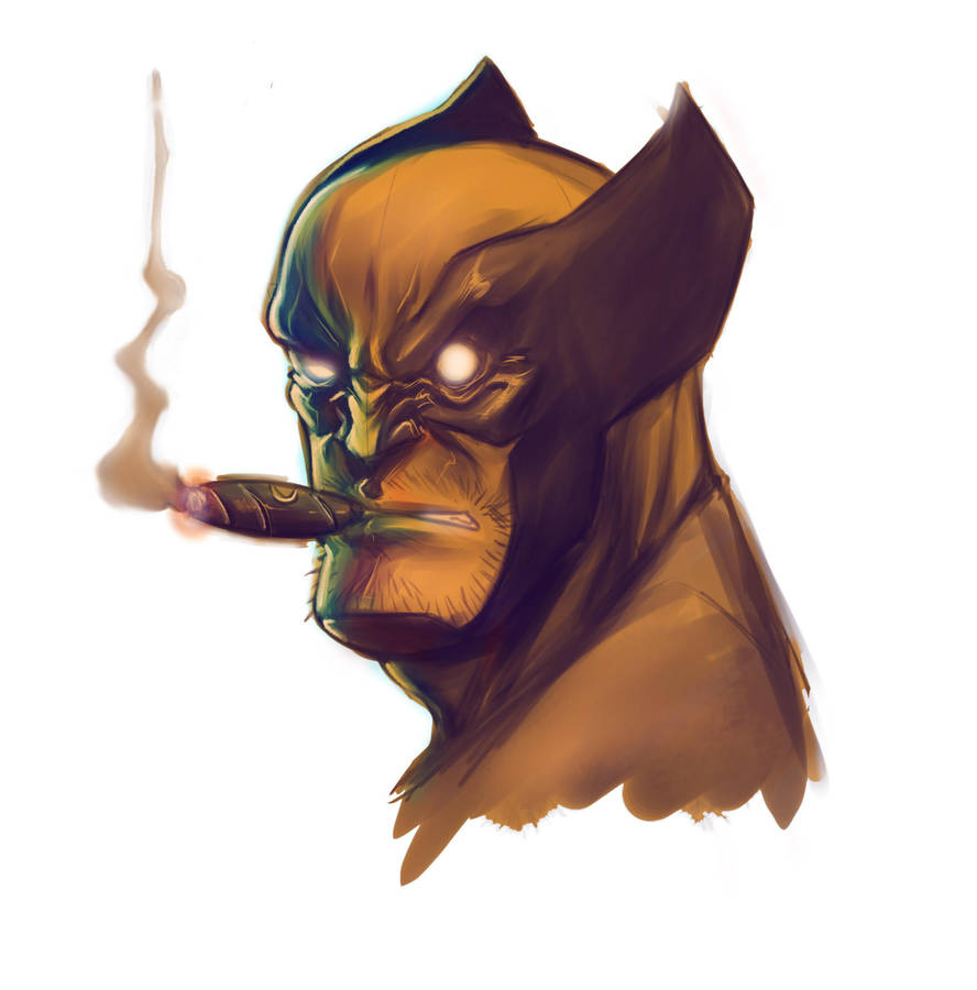 wolverine by salo-art