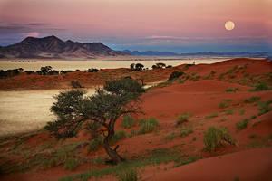 Desert moon by Zefisheye