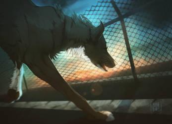Run boy run by Electra-wolf