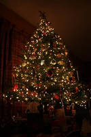 oh christmas tree by dancekellydance