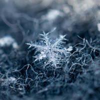 Snowflake by Soffeline